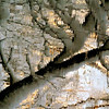 "The Heart Of Gold Of My Wild River!!! :))) / Le coeur d'or de ma rivière sauvage!!! :))) (Denis Collette...!!!) Tags: christmas winter snow canada gold bravo quebec or hiver rivière neige cœur sauvage guirlandes ""deniscollette"" «wildriver» world100f «neilyoung» «santaclaus» «pèrenoël» crèmeuse «heartofgold» tinsels"
