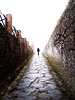Close to the end (Sator Arepo) Tags: contrast way point vanishingpoint reflex path olympus end pompeii highkey vanishing pompeya zuiko e500 uro 1454mm zd1454mm retofz080617