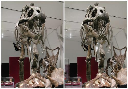 3D Dinosaur 08