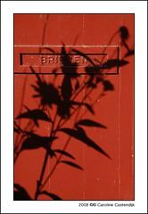 letter box (Caroline Castendijk) Tags: shadow red photography bravo utrecht caroline explore cc event curacao letterbox allrightsreserved yourfavorite mywinners carolinecastendijk castendijk 2008carolinecastendijk fotografiecuracao curaaofotografie curacaofotografie carolinecastendijkphotography photographycuraao carolinecastendijkfotografie carolinecastendijkphotographer