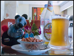 Wilbear enjoys a beer
