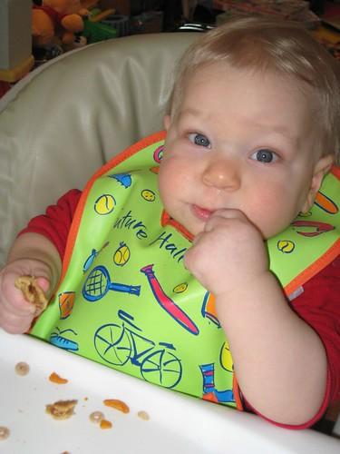 Eating his first Nutri-Grain bar