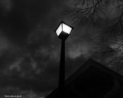 A Different View Of the Light Pole (that_damn_duck) Tags: blackandwhite monochrome pointofview lightpole clouds outdoor treelimbs bw blackwhite