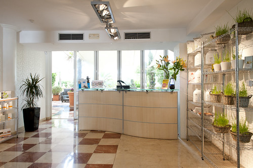 M Wellness, Ibiza gym, spa and health club