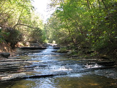 Tanyard Creek - 004 (Dug Hill, Arkansas, United States) Photo