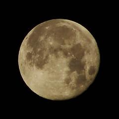 Moon shot, take two (bored-now) Tags: sky moon night challengeyouwinner dsch3 20080123