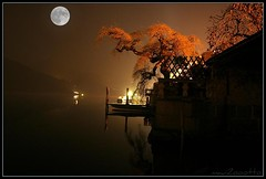Moontree (el maui / lefotodelmaui.it) Tags: italy moon lake tree water canon lago 350d san italia photographer sigma maui albero acqua reflexions fotografo isola giulio orta indeep the4elements 40d flickrelite betterthangood lefotodelmauiit lefotodelmaui wwwlefotodelmauiit quelmaui