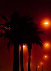 في قلب الضباب (| Rashid AlKuwari | Qatar) Tags: street clouds doha qatar rashid راشد نخل qtr شارع الكورنيش قطر الدوحة غيوم الكواري alkuwari ليتات lkuwari cornech