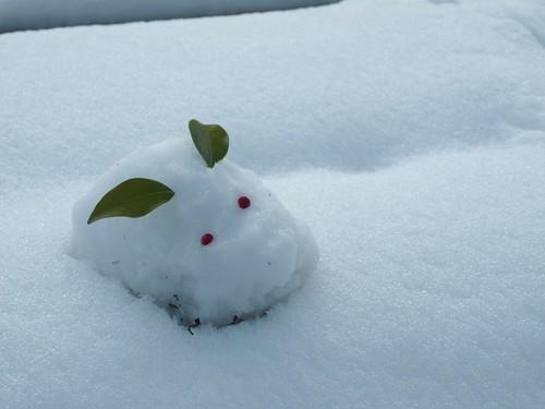 雪の大原 (66)