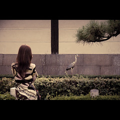 (Masahiro Makino) Tags: woman 20d heron japan female photoshop canon eos back kyoto adobe  lightroom  f456 efs1785mm feelfreetotagthis 20070903172935canoneos20ds25p