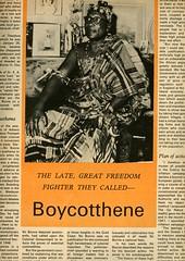 nii bonne boycotthene