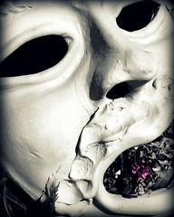 Grey & Purple (*Tom [luckytom] ) Tags: flower tom teatro grey interestingness grigio purple mask theatre terracotta clay mostinteresting fiore viola maschera ctm personaggio favcol mascherone luckytom