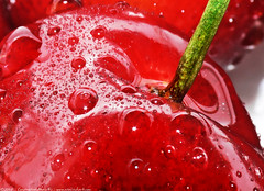 oh, cherry (atomicshark) Tags: leica red food macro water closeup fruit cherry droplets drops stem cherries sweet panasonic sparkle delicious glossy gloss supermacro soe sparkling dcr250 raynox dmcfz30 atomicshark aplusphoto macromarvels