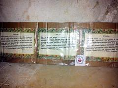 20120524_083511 (missionari.verbiti) Tags: verbiti amiciverbiti terrasanta turismo israele neghev marmorto qumran gerusalemme betlemme gerico nazareth tabor cafarnao hermon cesarea