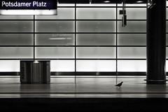 ..../\...Passenger (anvosa) Tags: berlin bahnhof potsdamerplatz spiegelung reflektion bhf anvosa