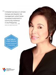 Banners for GPDRR2011 (Senator Loren Legarda)