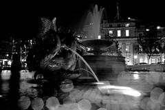 Trafalgar Square (mgratzer) Tags: blackandwhite bw white black bird london wet night splash fauntain showonmysite