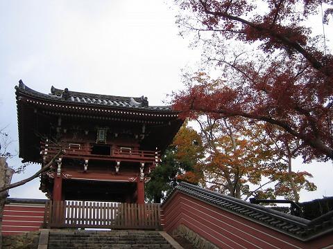 当麻寺-紅葉-27
