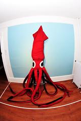 0941 (&y) Tags: seattle artgallery plush stuffedanimal giantsquid mcleodresidence