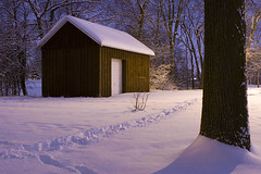 Wisconsin Winter (Shutter Daddy) Tags: winter snow wisconsin canon shed 2470mm f28l xti 400d