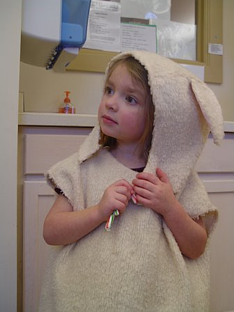 The sheep costume
