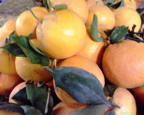 Orange Berkane