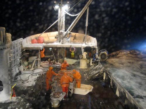 Pesca Mortal (Algunos datos)