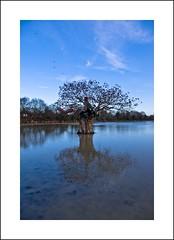 Water,Water (Andy Perry) Tags: uk blue light sky color nature landscape countryside pentax cloudscape aficionados supershot specnature k10d pentaxk10d bestnaturetnc07