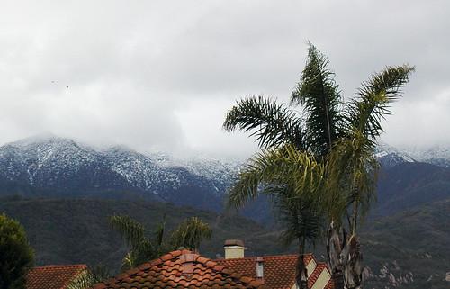 OMFG SNOW