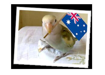 Howdy Australians