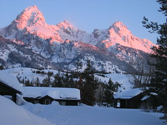 out the front door (Soy botanico) Tags: grand teton
