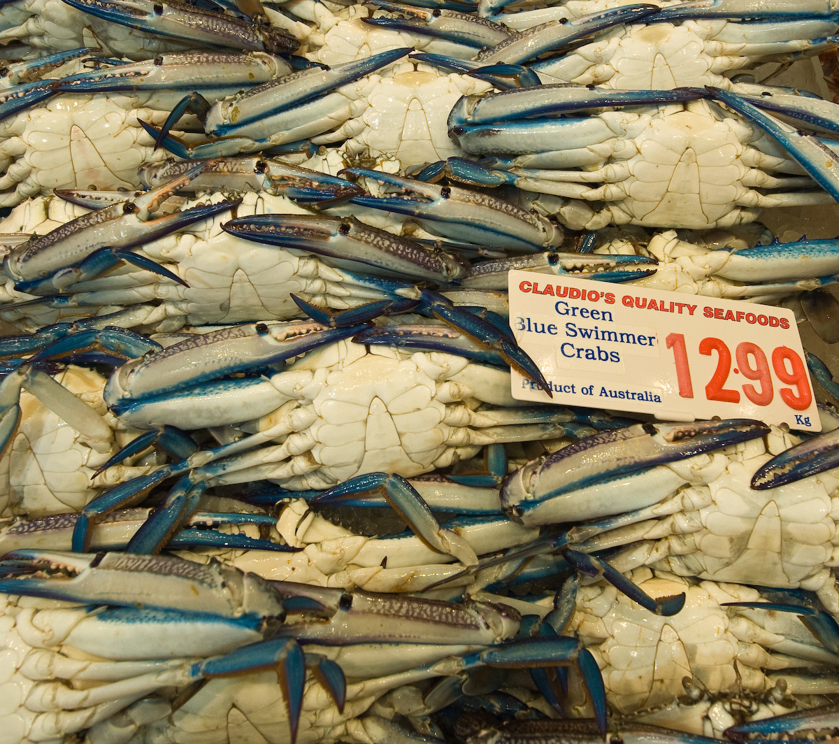Sydney Fish Market (1 of 2)