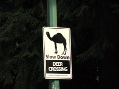 WTF?!? (jelee_unleashed) Tags: road strange sign funny crossing deer explore camel northvancouver wtf slowdown dollartonhighway