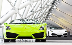 More Twins  | EXPLORED | (Thomas van Rooij) Tags: white verde cars netherlands car reflections photography italian nikon utrecht thomas nederland convertible automotive spyder exotic showroom nikkor scandal lamborghini luxury exclusive supercar dealership gallardo exotics cardealer supercars combo cabriolet 18105 d90 hessing rooij lp5604 thomasvanrooij