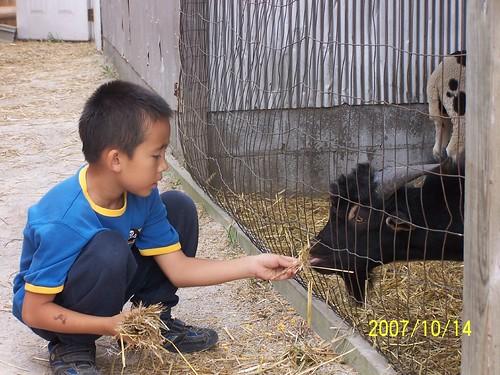 Annual farm visit