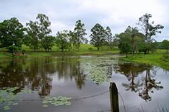 Fazenda Murici-Revisitando o lugar da minha adolescncia (Cida Garcia) Tags: minasgerais brasil vegetao machado aude muricy minasgearis