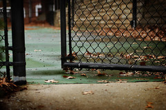 Come on in... (.Bradi.) Tags: abandoned wet leaves gate tenniscourt utata:project=tw91 ilikeemptyplaces theyrefuntoshoot