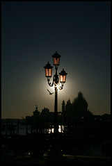 Backlight (Sartori Simone) Tags: italien venice sunset italy sun geotagged europa europe italia tramonto seagull sole venezia gabbiano controluce veneto madonnadellasalute rivadeglischiavoni allrightsreserved simonesartori unasplendidagiornata iitalie platinumheartaward unagiornataindimenticabile