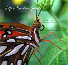 Life's Precious Jewels (cricketthestar) Tags: book poetry butterflies naturesfinest supershot blurbbook