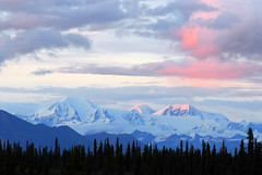 Alaska Range near Brushkana Creek #3 (NaturalLight) Tags: pink sunset mountain alaska creek campground range naturesfinest brushkana blueribbonwinner specnature mywinners abigfave superbmasterpiece diamondclassphotographer flickrdiamond citrit