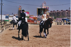 Fira del cavall (chausson bs) Tags: horse caballos riding amazonas cavalls sabadell
