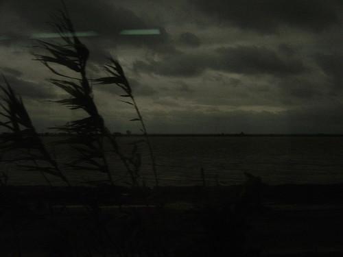 DSC01649© fatima ribeiro2008