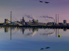 Corus Europe's largest steel producer (Bn) Tags: topf50 steel urbannature soe ijmuiden hoogovens corus velsen mirrorreflection aalscholvers supershot 50faves flickrsbest greatcormorants fineartphotos tatasteel aplusphoto holidaysvacanzeurlaub amazingshots superbmasterpiece diamondclassphotographer flickrdiamond megashot adoublefave theperfectphotographer spiritofphotography europeslargeststeelproducer averijhaven