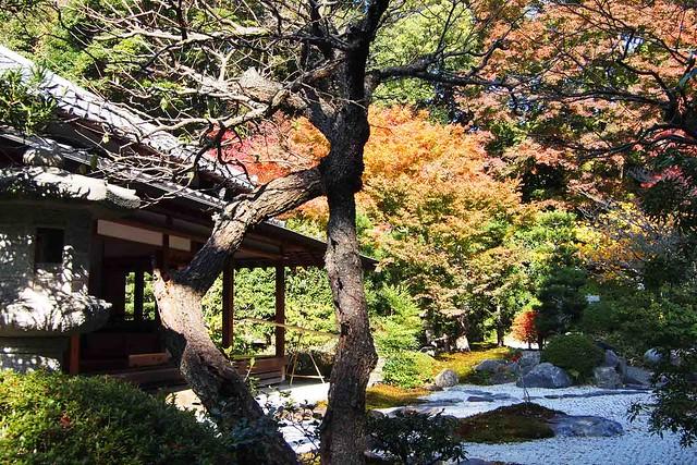 101128_114120_鎌倉_浄妙寺_枯山水庭園