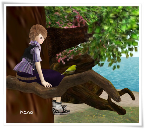 amaama+Singing Bird With You....