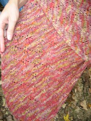 Falling leaves shawl