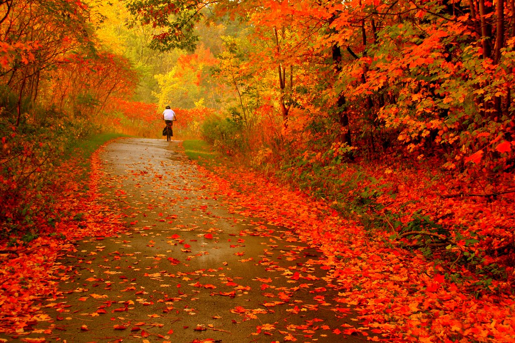 Autumn Ride !