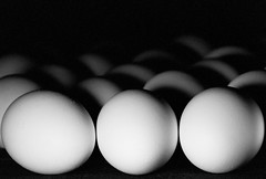 Eggs's army in the night (tzvetelina friedman) Tags: blackandwhite bw film key low eggs lowkey