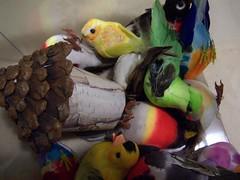 Birdie mobils