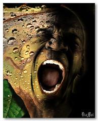 Acid Rain (ViaMoi) Tags: canada macro art digital photoshop ottawa supershot 35faves excellentcapture viamoi s2wrap s2wapsviamoi s2wrapsbyviamoi viamsp